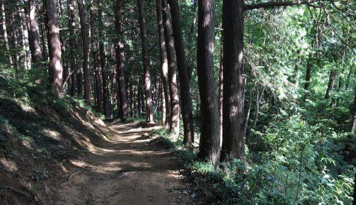 天覧山 (てんらんざん) 〜多峯主山(とおのすやま)を歩く