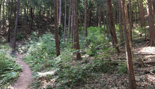 龍崖山(りゅうがいさん)を歩く