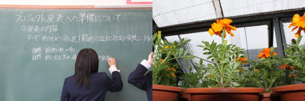青森県三本木農業高校 「命の花プロジェクト」とのコラボ猫塾