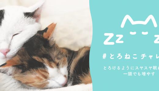 とろけるようにスヤスヤ眠れる猫を一頭でも増やすプロジェクト「#とろねこチャレンジ」