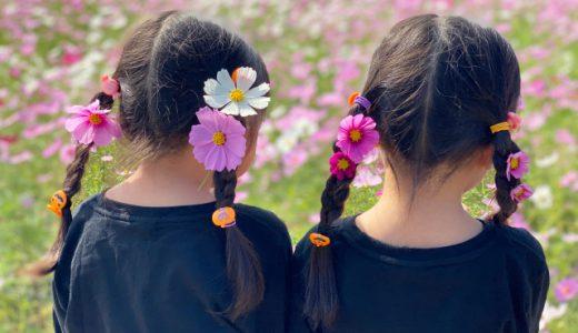 15cmから始められるヘアドネーションプロジェクト「つな髪」