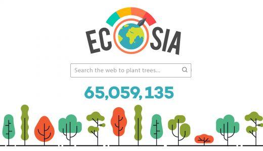 検索するたび植樹できる検索エンジン Ecosia